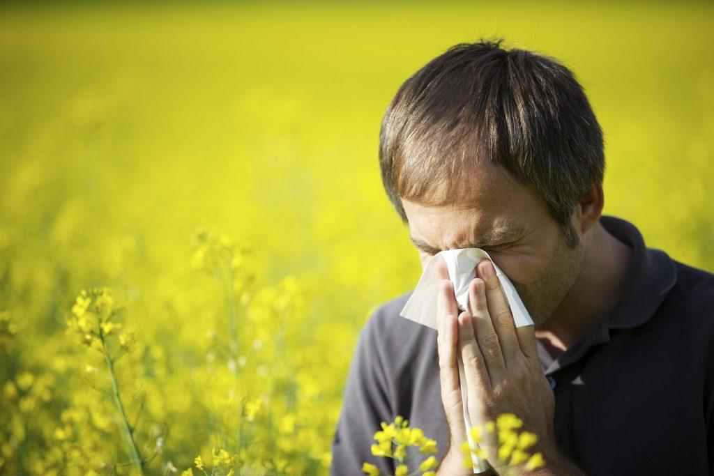 Alergia Respiratoria Primaveral Sintomas Tratamiento Y Prevencion