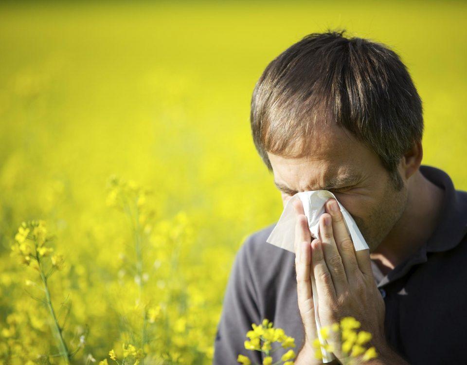 al·lèrgia respiratòria primaveral