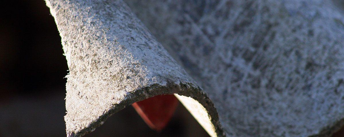 amianto neumologo jordi roig cutillas